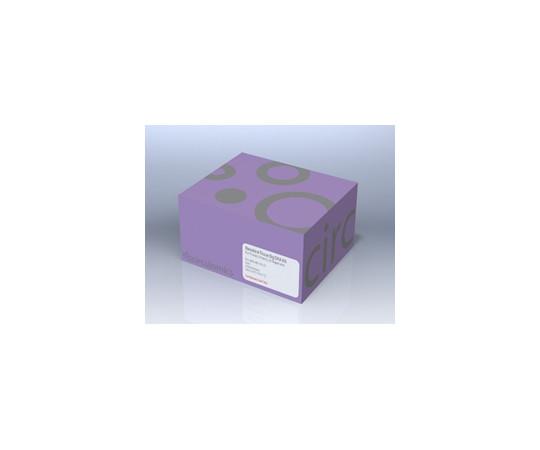ナノバインド高分子ゲノムDNA抽出キット - 組織用 NB-900-701-01