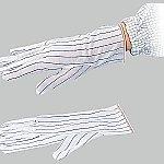 アズピュアESDポリエステル手袋