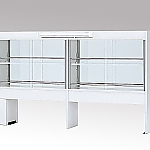 Reagent Shelf (White Type, Double-Sided Type) with Glass Door, with Fluorescent Lamp and others