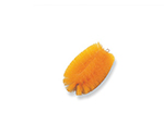 Color Scourer Orange and others