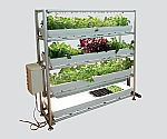 [Discontinued]Plant Cultivation Shelf Frame Type