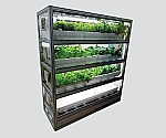 [Discontinued]Plant Cultivation Shelf Glass Case Type