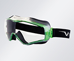 Face Protection Goggles 6X3000000