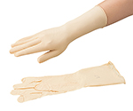 CLEAN KNOLL Neoprene Gloves (Pair Type) S 10 Pairs and others