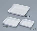 Plastic Photo Tray for 4.75 x 6.5In. Photos and others