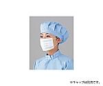 耳カケマスク4000枚 PA-FM3-01-F-2000P×2