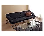 Folding Sofa Bed Black/Silver  536306OTB-SFN