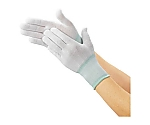 フィット手袋(10双入)