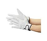 マジック式手袋等