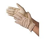 豚ライナー手袋(10双入)等