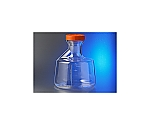 Erlenmeyer Flask 1L with Small Filter, Dip Tube, Male Lure Lock and others
