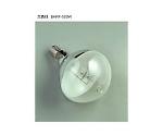 水銀作業灯 500W 0.3M RGM-500