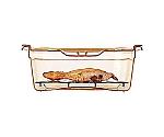 ラバーメイド フードパン 排水トレイ ホットパン用 アンバー 127P46
