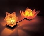 ライト・照明・ランプ