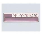 卒業記念プレート(10枚組)アルミ製