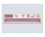 卒業記念プレート(10枚組)アルミ製 47100