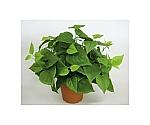 光触媒人工植物 ライムポトス 約W400×D400×H360mm S3608-40N
