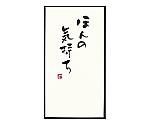 [取扱停止]手書きのし袋 [ほんの気持ち] TNシリーズ