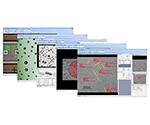 画像計測・金属組織解析ソフト QGPシリーズ