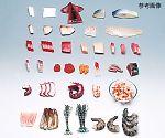 フードモデル(魚介類42~79)