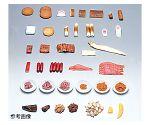 フードモデル(魚介類113~150)