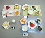 フードモデル57-A 健康な高齢者の献立1500Kcalごはんセット