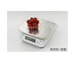 Waterproof Digital upper plate scale JustNAVI (Double Sided View) and others