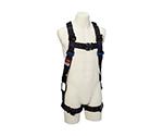 Safety Belt/Lanyard