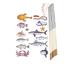 釣りっこ 釣りっこ2 魚15種・竿6本等