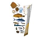 釣りっこ 釣りっこ5 魚15種・竿6本等