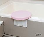 ベンチバスター(R) 入浴ボード 103320