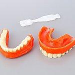 尊体用義歯 エンゼルデンチャー
