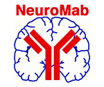 Neuroligin-1