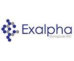 Protein Phosphatase 1 alpha P105P P105P